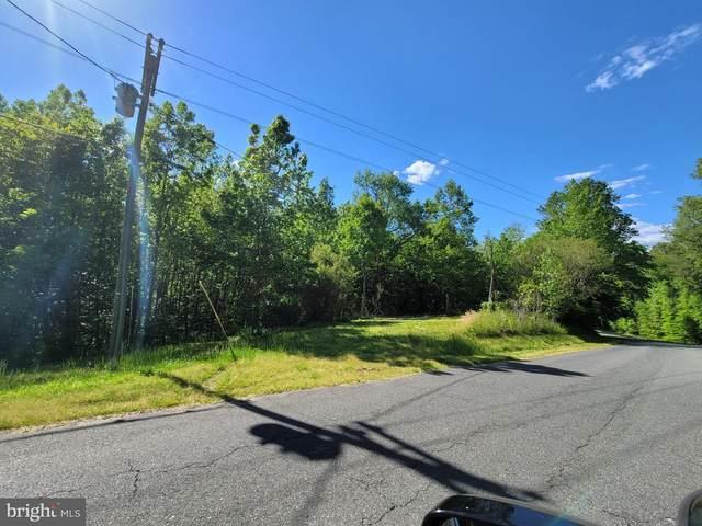 109 Wood Landing Road, FREDERICKSBURG, VA 22405 (#VAST232692) :: RE/MAX Cornerstone Realty