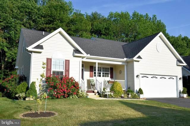 47 Waters Edge Drive, DOVER, DE 19904 (MLS #DEKT249028) :: Kiliszek Real Estate Experts