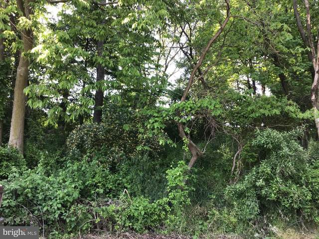 5624 Orphanage Road, WAYNESBORO, PA 17268 (#PAFL180016) :: The Joy Daniels Real Estate Group