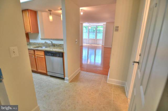 11800 Sunset Hills Road #312, RESTON, VA 20190 (#VAFX1203096) :: Erik Hoferer & Associates