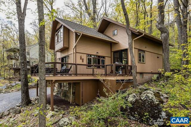160 Firtree Drive, ROSELAND, VA 22967 (#617782) :: The Sky Group