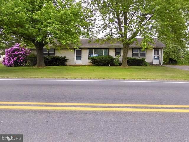 1981 Camp Swatara Road, MYERSTOWN, PA 17067 (#PABK378022) :: Iron Valley Real Estate