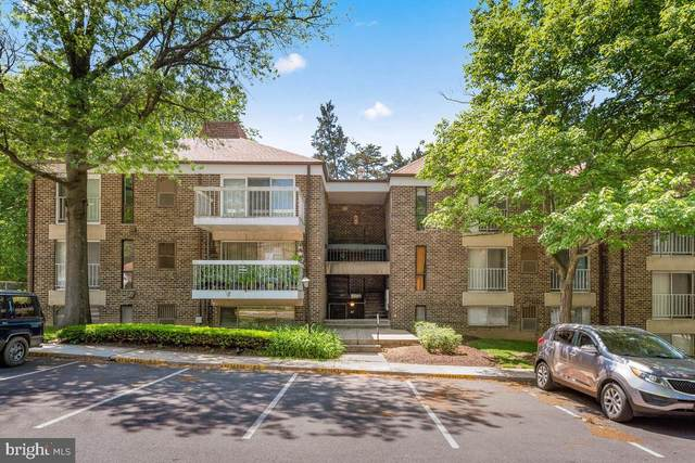 3340 Hewitt Avenue 4-3-A, SILVER SPRING, MD 20906 (#MDMC760030) :: The Redux Group