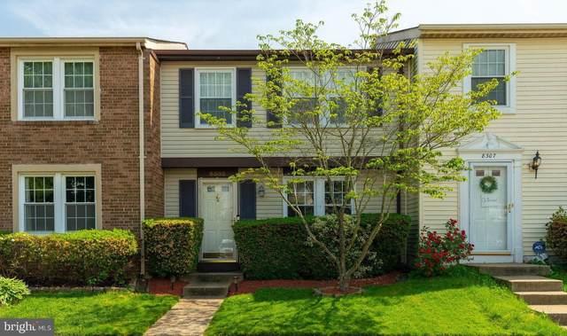 8305 Bark Tree Court, SPRINGFIELD, VA 22153 (#VAFX1203638) :: RE/MAX Advantage Realty