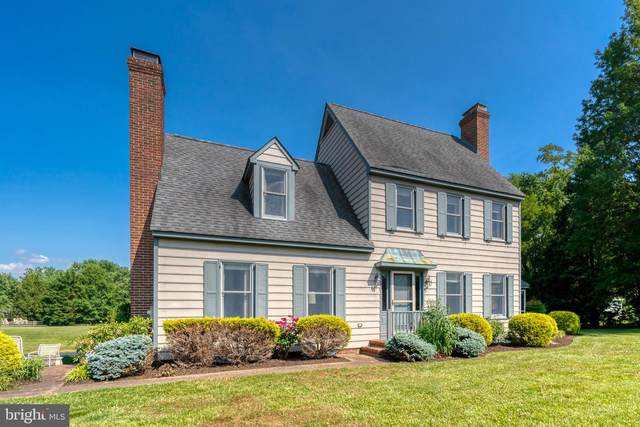 8714 Park Drive, CHESTERTOWN, MD 21620 (#MDKE118156) :: The Mike Coleman Team