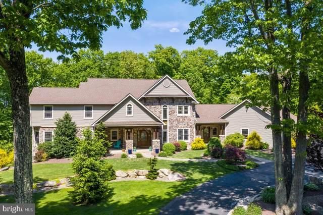 64 Bear Foot Lane, BARTO, PA 19504 (#PABK378104) :: Murray & Co. Real Estate
