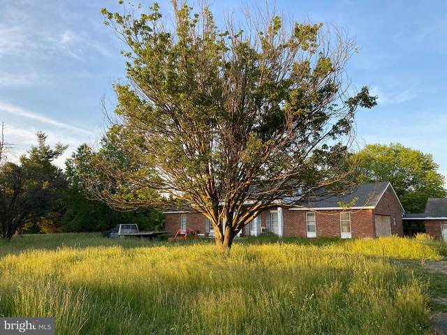 38935 John Wolford Road, WATERFORD, VA 20197 (#VALO439396) :: Bowers Realty Group