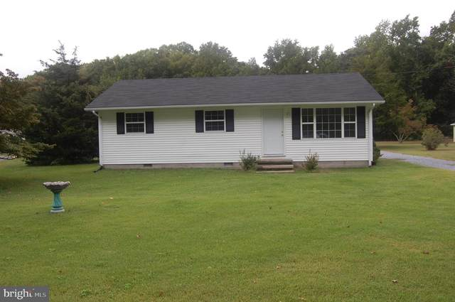 34214 Vines Creek, DAGSBORO, DE 19939 (#DESU183678) :: At The Beach Real Estate
