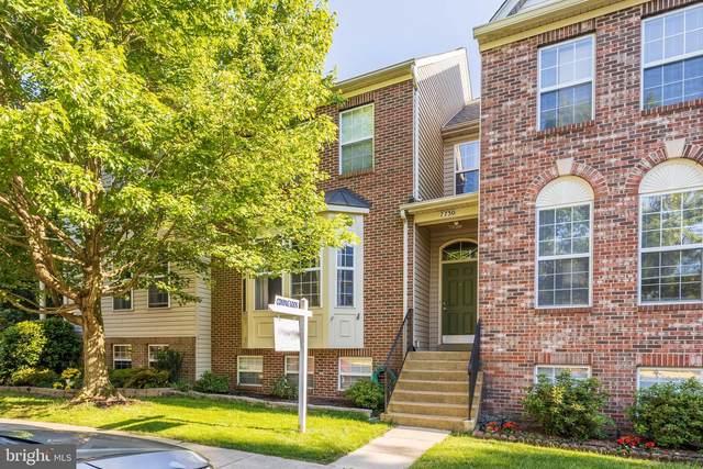 7730 Martin Allen Court, ALEXANDRIA, VA 22315 (#VAFX1204004) :: Sunrise Home Sales Team of Mackintosh Inc Realtors