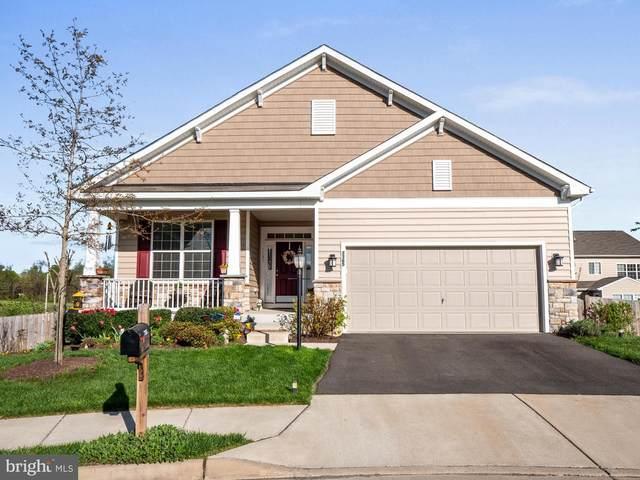7365 Trundle Court, WARRENTON, VA 20187 (#VAFQ170780) :: Colgan Real Estate