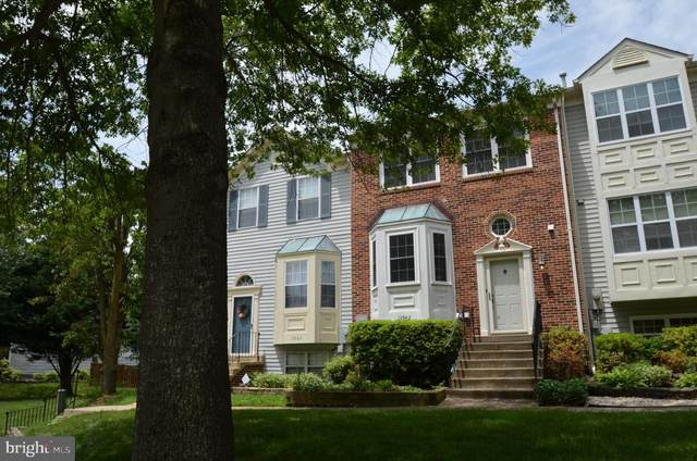 13962 Antonia Ford Court, CENTREVILLE, VA 20121 (#VAFX1204318) :: The Piano Home Group