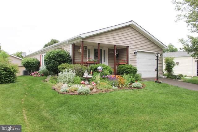 173 Grouse Circle, NEW HOPE, PA 18938 (#PABU528664) :: Ramus Realty Group