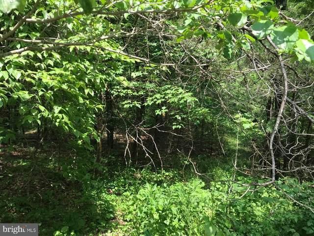 0 Willow, MOUNT JACKSON, VA 22842 (#VASH122410) :: Talbot Greenya Group