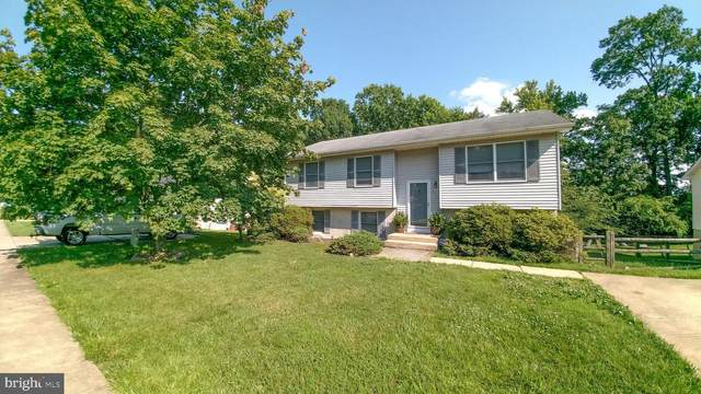 313 Village Rd, ELKTON, MD 21921 (#MDCC174998) :: The Licata Group / EXP Realty
