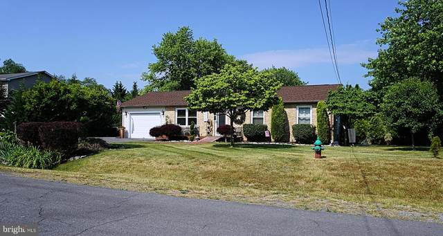 107 Massie Drive, WINCHESTER, VA 22602 (MLS #VAFV164400) :: PORTERPLUS REALTY