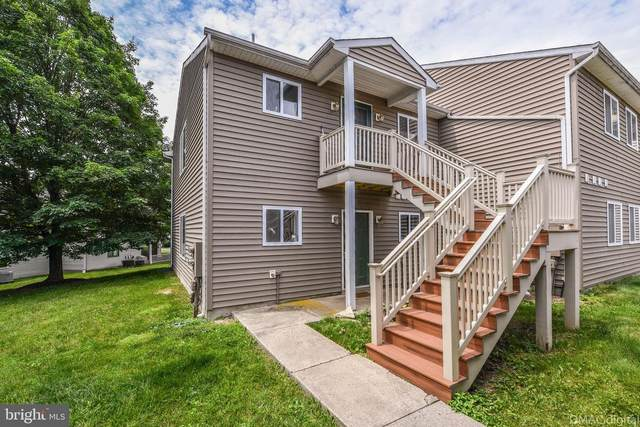 10284-C White Pelican Way 108C, NEW MARKET, MD 21774 (#MDFR283188) :: Ultimate Selling Team