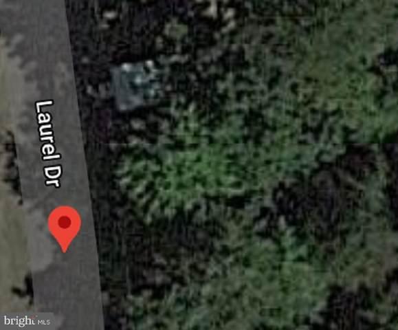 204 Laurel Drive, FORT LOUDON, PA 17224 (#PAFL180162) :: The Redux Group