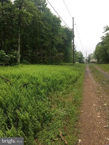 Ashwood Trail, WINCHESTER, VA 22602 (#VAFV164432) :: Eng Garcia Properties, LLC