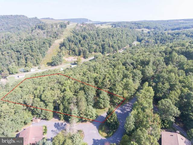 Lot 8 The Gleanings, MC HENRY, MD 21541 (#MDGA135334) :: Shamrock Realty Group, Inc