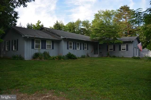 247 Vine Lane, WINCHESTER, VA 22602 (#VAFV164462) :: Sunrise Home Sales Team of Mackintosh Inc Realtors