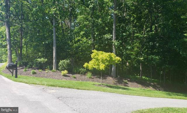 14536 Black Ankle, MOUNT AIRY, MD 21771 (#MDFR283354) :: Talbot Greenya Group