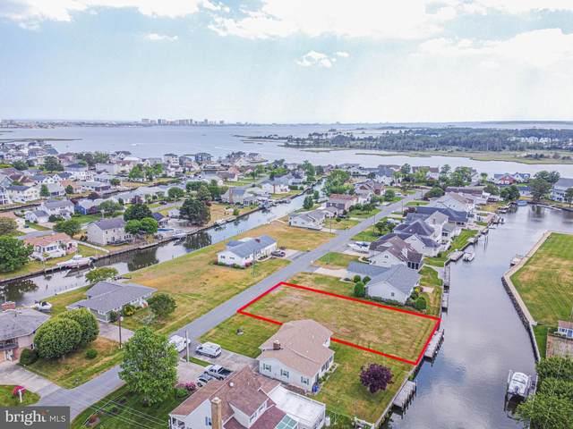 38302 River Birch Drive, SELBYVILLE, DE 19975 (#DESU184078) :: Linda Dale Real Estate Experts