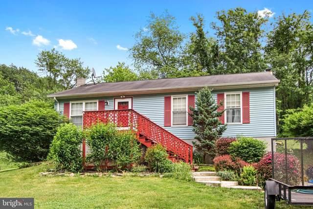 12587 Laurel Hill Road, FELTON, PA 17322 (#PAYK159504) :: The Joy Daniels Real Estate Group
