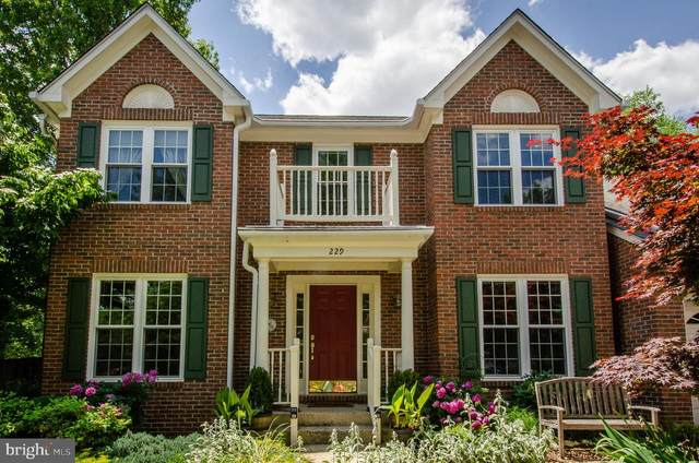 229 Newhall Place SW, LEESBURG, VA 20175 (#VALO440128) :: AJ Team Realty