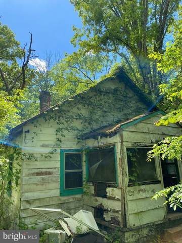 3012 Carter Hill Lane, WARRENTON, VA 20186 (#VAFQ170858) :: The Sky Group
