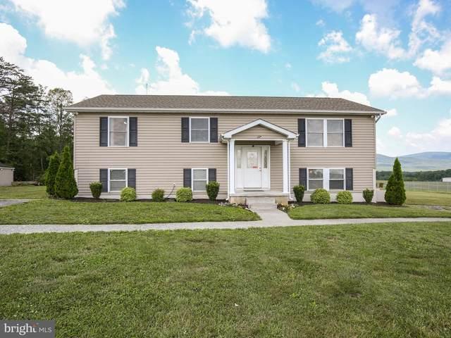 117 Lorric Drive, FRONT ROYAL, VA 22630 (#VAWR143828) :: A Magnolia Home Team