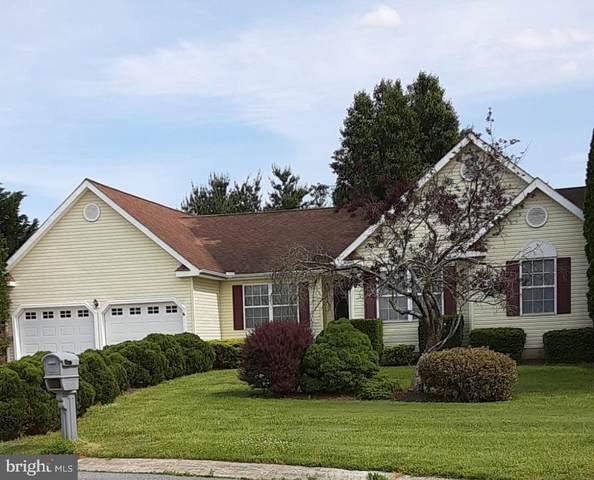 301 Kindling Drive, FELTON, DE 19943 (MLS #DEKT249332) :: PORTERPLUS REALTY