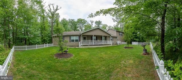 16 Kirk Road, GARNET VALLEY, PA 19060 (#PADE547550) :: The Matt Lenza Real Estate Team