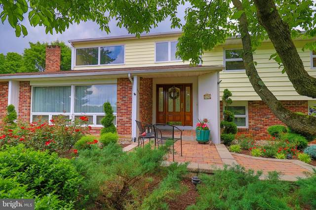 450 Eisenhower Drive, ORWIGSBURG, PA 17961 (#PASK135540) :: LoCoMusings