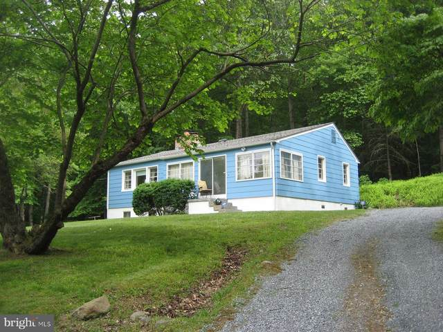 2459 Frogtown Road, BLUEMONT, VA 20135 (#VACL112442) :: Peter Knapp Realty Group