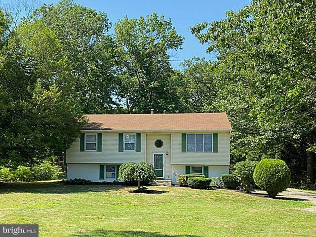888 Landis Avenue, ELMER, NJ 08318 (#NJSA142088) :: Colgan Real Estate