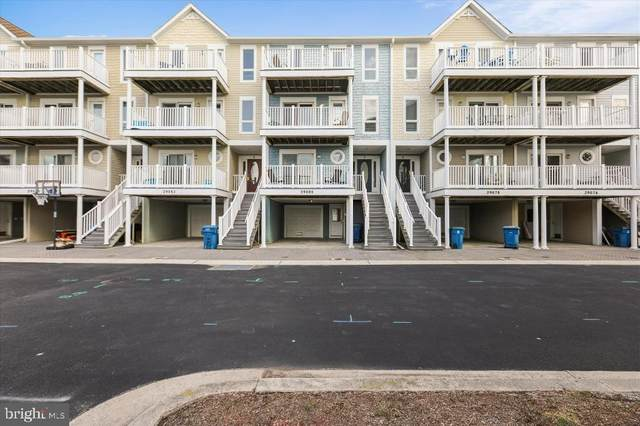29080 Beach Cove Square D5, BETHANY BEACH, DE 19930 (#DESU184246) :: Dawn Wolf Team
