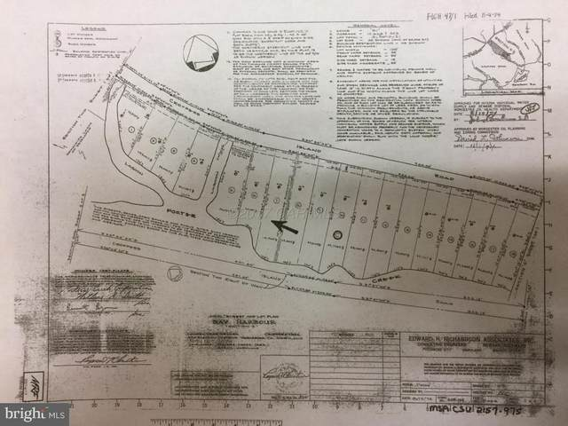 LOT #7 Croppers Island Road, NEWARK, MD 21841 (#MDWO122904) :: At The Beach Real Estate