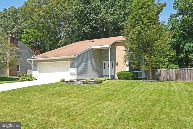 6228 Capella Avenue, BURKE, VA 22015 (#VAFX1205940) :: Debbie Dogrul Associates - Long and Foster Real Estate