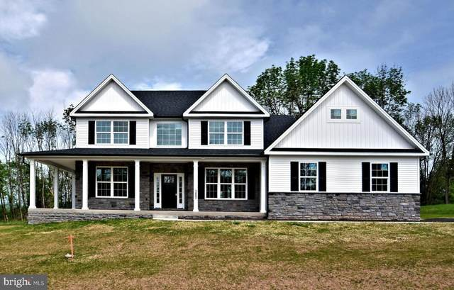 1007 Briar Ridge Way, EAST GREENVILLE, PA 18041 (#PAMC695614) :: Erik Hoferer & Associates
