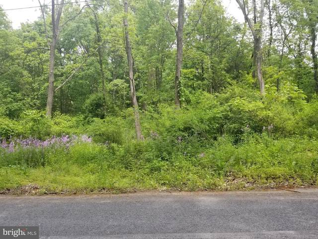 0 Lauver Hill Road, MOUNT PLEASANT MILLS, PA 17853 (#PASY100308) :: The Joy Daniels Real Estate Group