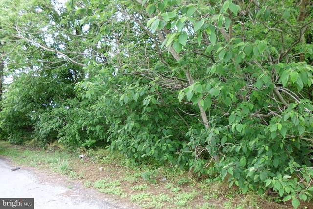 210 Milton Ellendale Highway, MILTON, DE 19968 (#DESU184288) :: The Lisa Mathena Group