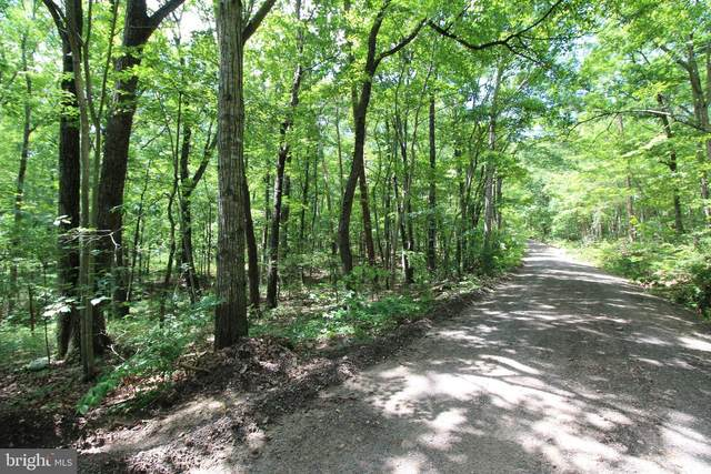 Indian Trail Road, LURAY, VA 22835 (#VAPA106310) :: Blackwell Real Estate