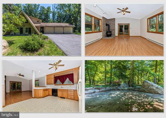 6119 Quinn Road, FREDERICK, MD 21701 (#MDFR283566) :: Ultimate Selling Team