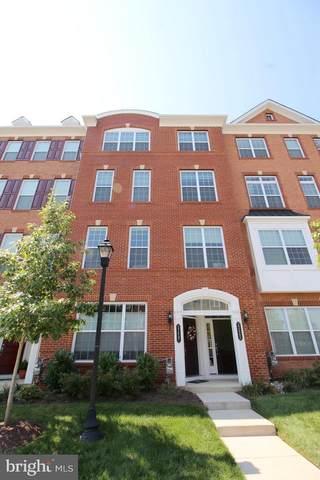 23465 Belvoir Woods Terrace, ASHBURN, VA 20148 (#VALO440414) :: Arlington Realty, Inc.
