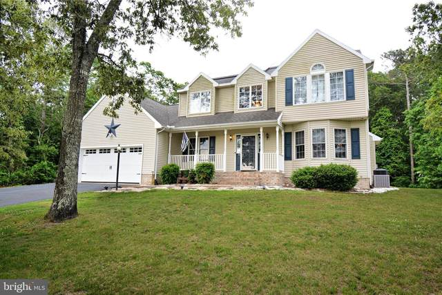 5449 Waste Gate Road, PARSONSBURG, MD 21849 (#MDWC113336) :: Bright Home Group
