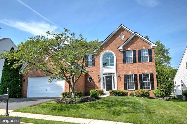 47429 River Falls Drive, STERLING, VA 20165 (#VALO440472) :: The Piano Home Group