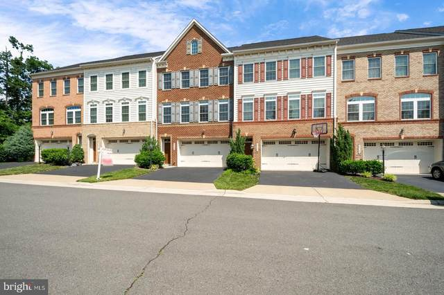25149 Deerhurst Terrace, CHANTILLY, VA 20152 (#VALO440474) :: RE/MAX Advantage Realty