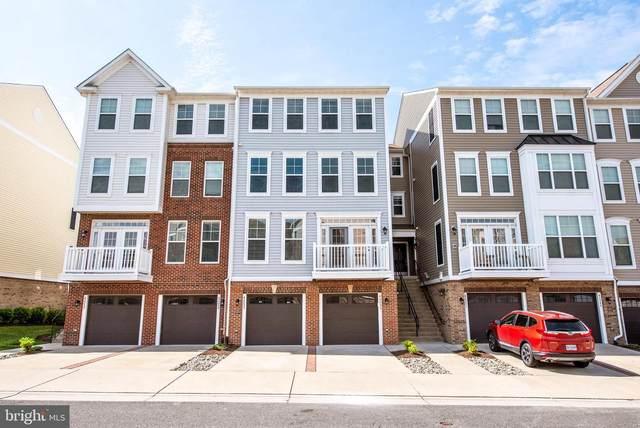 42253 Canary Grass Square, ALDIE, VA 20105 (#VALO440496) :: Jennifer Mack Properties