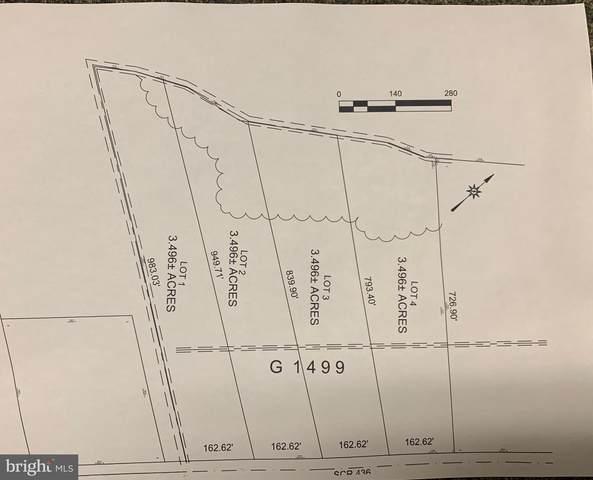 lot 3 Curley Drive, MILLSBORO, DE 19966 (#DESU184382) :: The Lisa Mathena Group