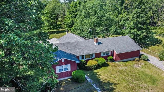 172 Braddock Avenue, HAMMONTON, NJ 08037 (MLS #NJCD421452) :: Kiliszek Real Estate Experts